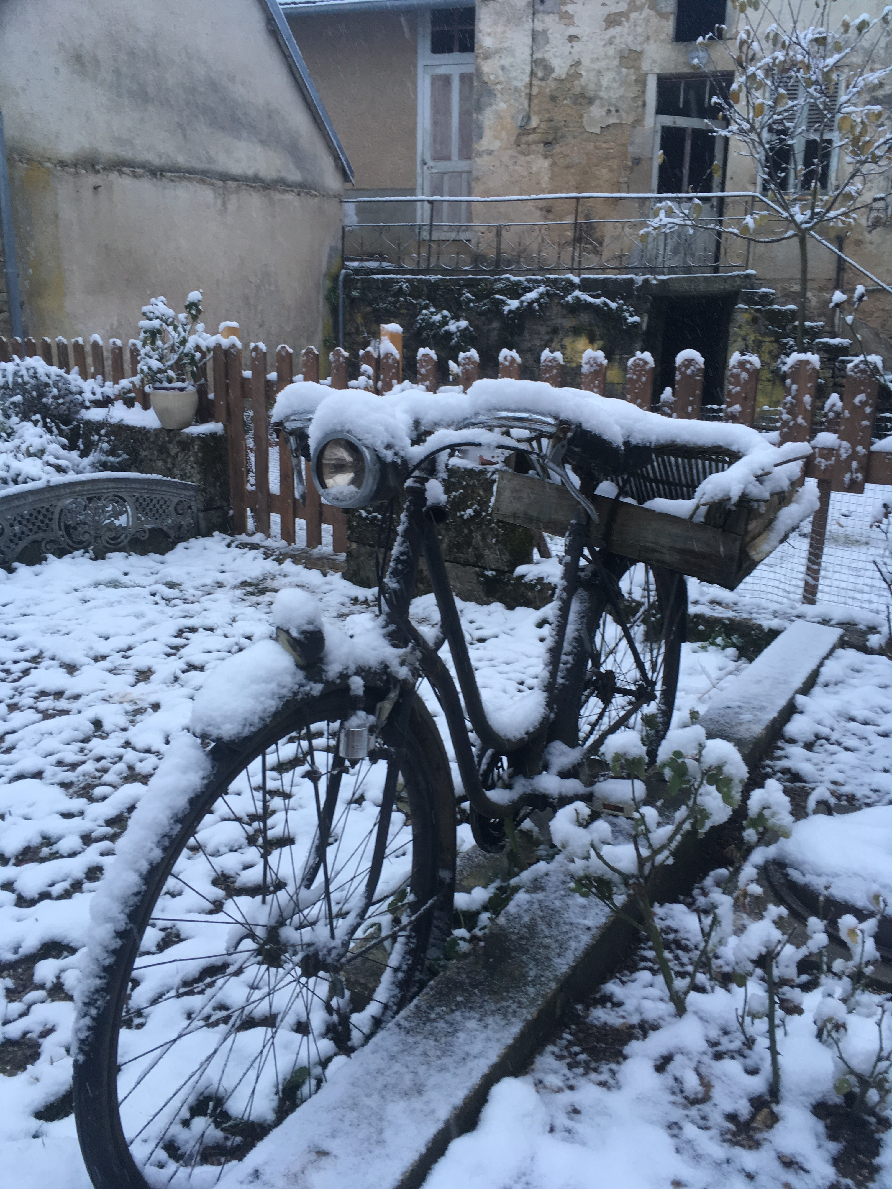 La neige, invitée de décembre
